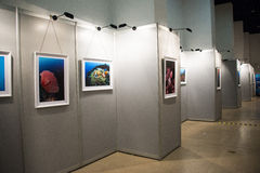 The photo exhibition, the exhibition hall Royalty Free Stock Image