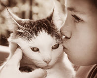 Photo extérieure de garçon et de chat Photographie stock