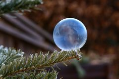 Photo of fabulous soap bubbles in the frost. Photo of fairy soap bubbles on a frost stock images