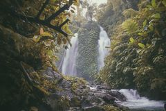 Photo of Falls Surrounded With Green Trees Royalty Free Stock Photography