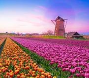 Photo fascinante magique de beaux moulins à vent tournant dans Images libres de droits