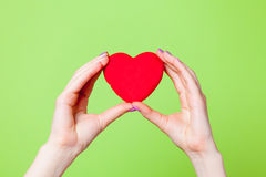 Photo of female hands holding heart shaped toy on the wonderful. Green background stock images