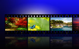 Photo film. A film reel has different nature photo images on it and there is a glowing black background. Use it for a media technology concept Stock Photos