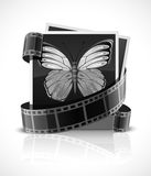 Photo film and photograph picture with butterfly. Vector illustration Royalty Free Stock Image