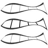 Photo film strip fish. Film strips warped into a fish shape with room for your own images Royalty Free Stock Images