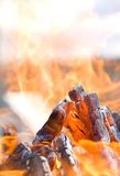 Photo of a fire. In daylight Royalty Free Stock Photography