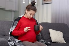 Photo fo pregnant female takes medicine, holds cup and pill, needs vitamins, dressed casually, sits at couch. Woman expect child,. Drinks medicaments to cure royalty free stock photography