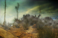 Photo of foggy desert hill. With rocks and plants Royalty Free Stock Photo