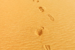 Photo of footprints on the sand of a desert in the United Arab E Stock Photo