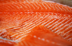 Photo fragment of red fish Royalty Free Stock Photo
