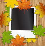 Photo frame with autumn leave Royalty Free Stock Images
