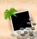 Photo frame background with stones and palm Stock Photos