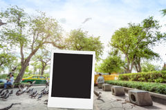 photo frame on big tree blackground blur Royalty Free Stock Photo