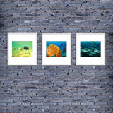 photo frame on brick wall texture or background, gray  color. de Royalty Free Stock Images