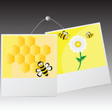 Photo frame with cute bee  Royalty Free Stock Images