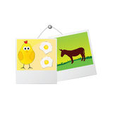 Photo frame with cute donkey and the chicken Stock Photos