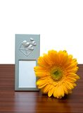 Photo frame and flower. Blank photo frame and yellow flower on white stock photography