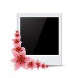 Photo frame Flower Royalty Free Stock Photos