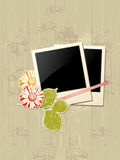 Photo frame with flowers Stock Images