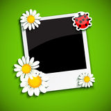 Photo frame with flowers Stock Photography