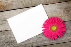 Photo frame and gerbera flower Stock Photography
