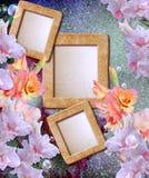 Photo frame with gladiolus. Old grunge background with photo frame with gladiolus Royalty Free Stock Photos
