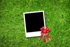 Photo frame on grass Royalty Free Stock Photos