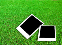 Photo frame on green grass. Background Stock Photography