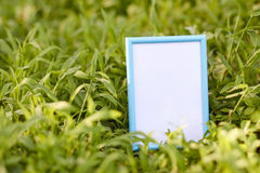 Photo frame  on green grass. Close up Royalty Free Stock Image