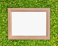 photo frame on green ivy Royalty Free Stock Images