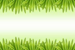 Photo frame green leaves. Royalty Free Stock Images