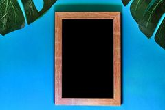 Photo frame and green monstera leaves on blue background with neon lighting. Trendy tropical flat lay concept. Photo frame and green monstera leaves on blue royalty free stock photos