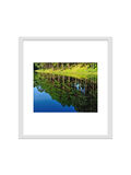 Photo frame isolated for decorate, interior, souvenir, gift, design stock photo