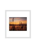 Photo frame isolated for decorate, interior, souvenir, gift, design stock image