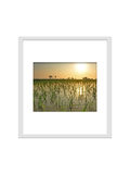 Photo frame isolated for decorate, interior, souvenir, gift, design stock photography