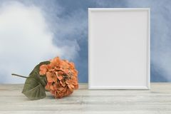 Photo frame with orange flower on wooden table and natural bright sky background. Place your text or photo. Concept card. stock photography