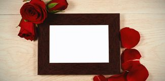 Photo frame and rose flower. Empty photo frame and rose flower royalty free stock photos