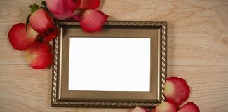 Photo frame and rose flower. Empty photo frame and rose flower royalty free stock photo
