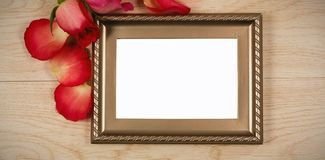 Photo frame and rose flower. Empty photo frame and rose flower stock photography