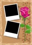 Photo frame and rose Stock Image