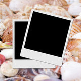 Photo frame on seashells Stock Photos