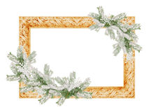 Photo frame with snowy spruce tree branches isolated on a white background Royalty Free Stock Photos