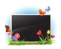 Photo frame with spring flowers Stock Image