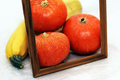 Photo frame and vegetables, fresh pumpkin Stock Image