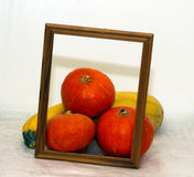 Photo frame and vegetables, fresh pumpkin Royalty Free Stock Photos