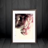 Photo Frame On The Wall Royalty Free Stock Photo