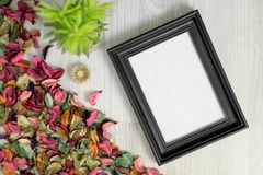 Photo Frame on Wood Background with Potted Plant and Dry Flower Petals. Photo frame on white wood background with potted plant and dry flower petals Royalty Free Stock Photo