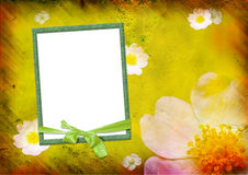 Photo frame on the yellow background Stock Images