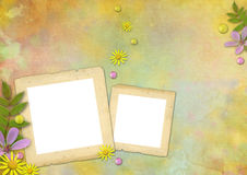 Photo frames on the abstract background. Photo frames on the abstract pastel-colored paper background with the flowers and pearls Stock Photos
