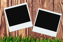 Photo frames on the background of grass Stock Photo